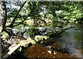 SK2181 : River Derwent Stepping Stones - near Offerton by Neil Theasby