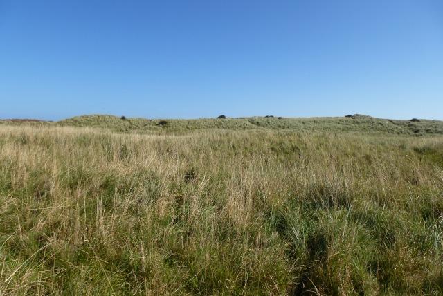 Druridge dunes
