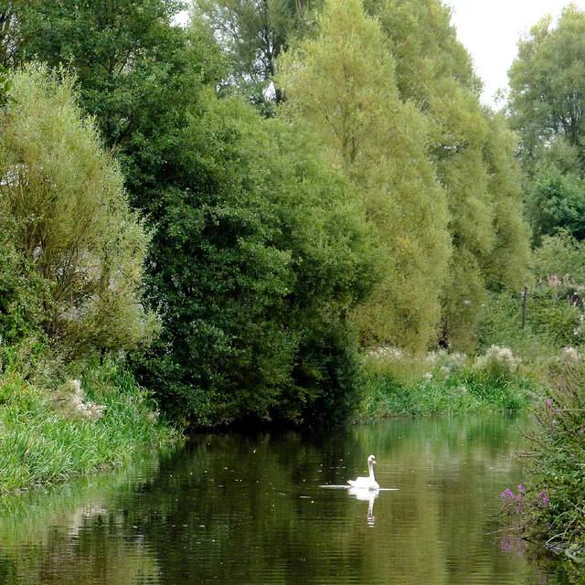 Canal south of Penkridge, Staffordshire