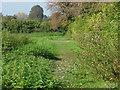 TQ0852 : Field edge near the Sheepleas by Alan Hunt