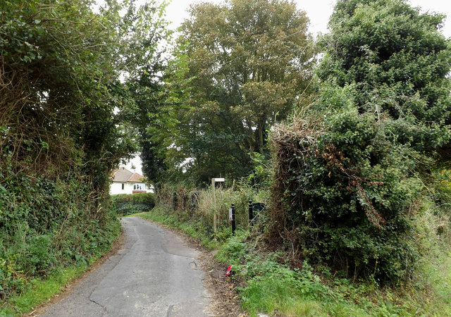 Castle Orchard & footpath