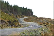 NM9210 : Forest road in Inverliever Forest by Patrick Mackie