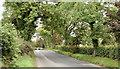 J2362 : The Blaris Road near Lisburn - September 2014(1) by Albert Bridge