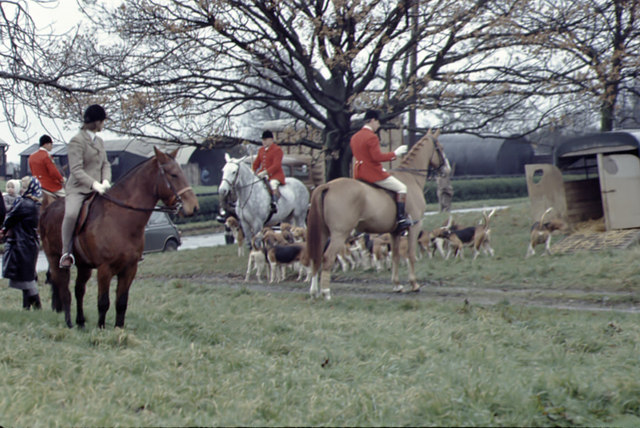 Bedale Hunt on Hornby Green 1960s