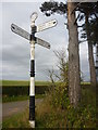 NT5065 : Rural East Lothian : ELCC Fingerpost And Scots Pines At Marvingston Crossroads by Richard West
