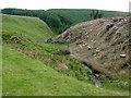SN8556 : Cwm Nant-y-Fedw south of Drygarn-Fach, Powys by Roger  Kidd