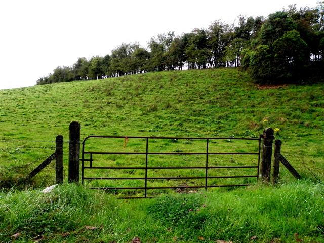 Gate, Grange