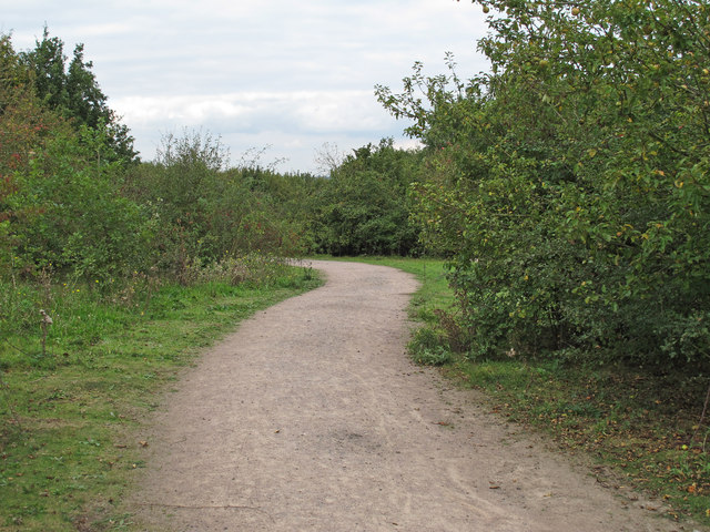 Path in Thames Chase Forest Centre