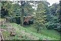 NZ6519 : Bridge, Skelton Castle by Mick Garratt