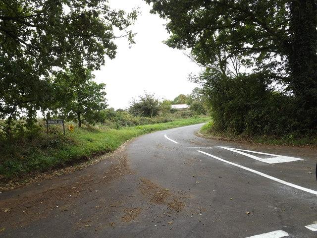 Primrose Lane,Shelton Green