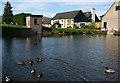 NJ1928 : The Glenlivet Distillery Pond by Anne Burgess