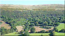 SO2730 : Hillside above the Llanthony Valley by Jeremy Bolwell
