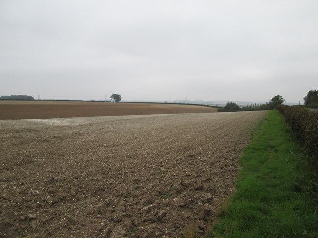 Wolds  landscape