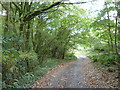 SW6536 : Public bridleway leading to Higher Bodrivial by Rod Allday