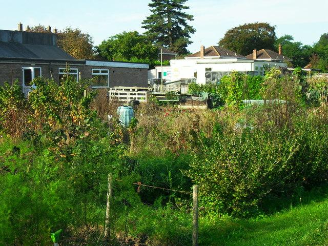 Chewell Lane allotments, Haddenham