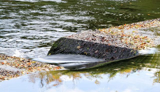 Fish pass, River Lagan near Shaw's    © Albert Bridge