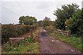 SJ9247 : Track onto Wetley Moor by Richard Dorrell