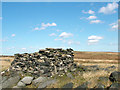 SD9614 : Stone Shelter by Stephen Burton