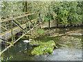 TL7306 : Millpond, Sandford Mill, Chelmsford, Essex by Christine Matthews