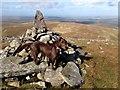 NX4090 : Cairn near trig point of Shalloch on Minnoch by John Chroston