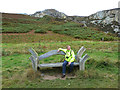 """SH2283 : A """"crafty"""" seat in the Breakwater Country Park by Oliver Dixon"""
