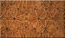 ST6316 : Sherborne Abbey by Anne Burgess