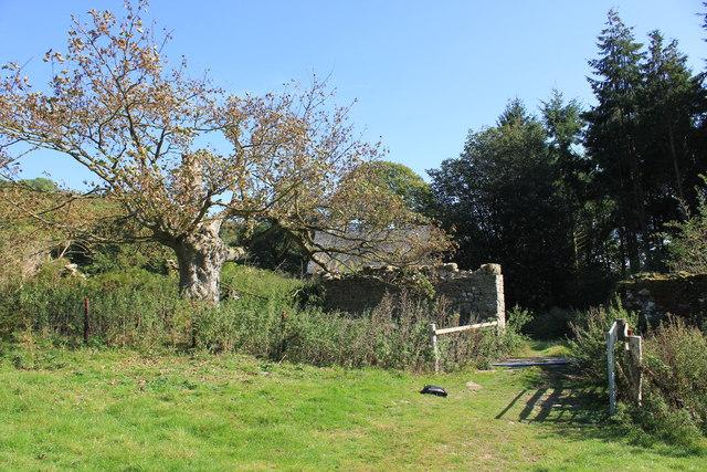Chirk Castle Estate