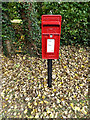 TL7554 : Wickham Street Postbox by Adrian Cable