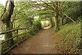 SH5836 : Wild Wood by Richard Croft
