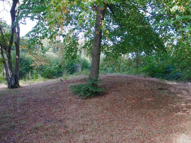 Burial Mound, Norsey Wood