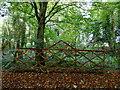 H4863 : Bridge and railings, Seskinore by Kenneth  Allen
