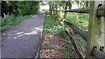 SP1106 : Public Footpath from Arlington Row to Arlington Mill by Roger Gittins