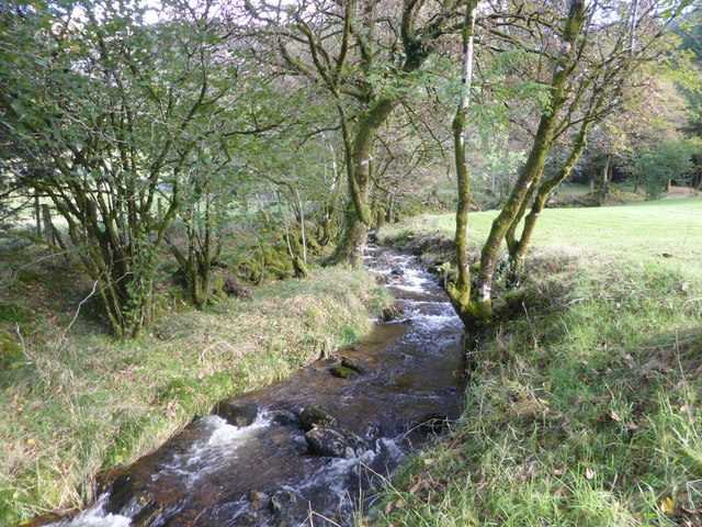 Tributary of the Afon Cynfal by David Medcalf
