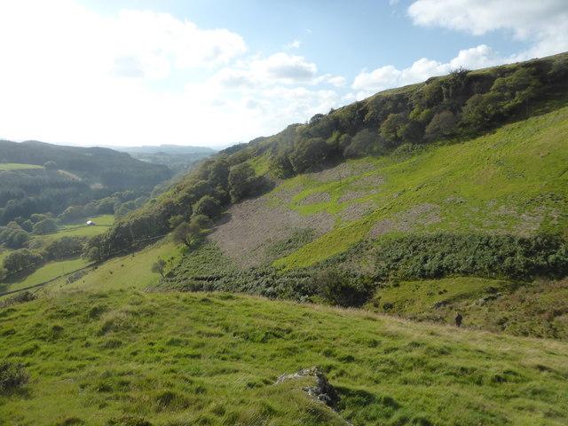 Bracken clearance in Cwm Cynfal by David Medcalf