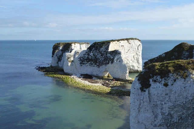 Old Harry Walk 05