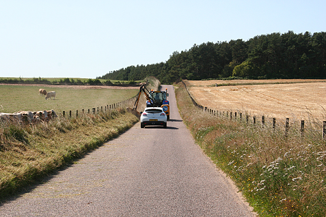 Mowing the Verges
