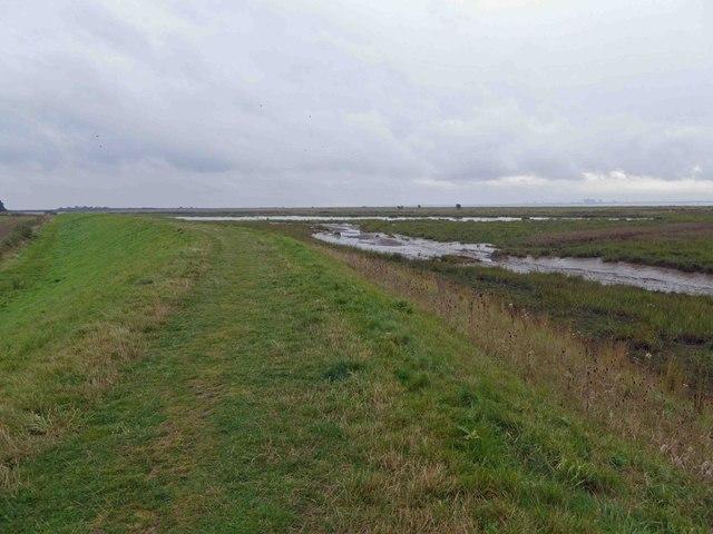 Paull Holme strays flood embankment