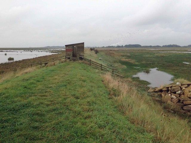 Humber estuary bird watching hide
