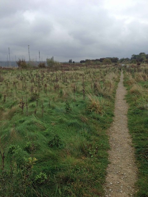 Path to car park at Paull Holme Sands nature reserve