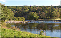 NH3840 : The River Farrar near Culligran by Nigel Brown