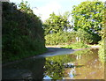 SY4698 : Road Junction near Silkhay by Nigel Mykura
