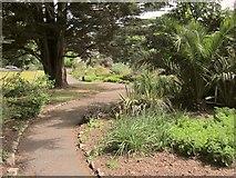 SX9164 : Path in Upton Park by Derek Harper