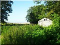 TL5281 : Shed in the nettles by Andrea