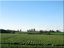 SK1409 : Farmland near Lichfield by Stephen Craven