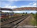SX9784 : New bridge being constructed, Powderham (2) by David Smith