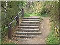 NT3497 : Steps on the Fife Coastal Path by Sandy Gemmill