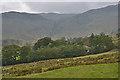 NY5012 : Looking over Swindale Head farm by Nigel Brown
