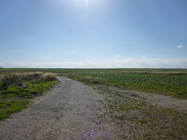 Track to Ulgham