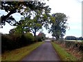 SK2532 : Willowpit Lane by Jonathan Clitheroe