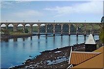 NT9953 : Royal Border Bridge, Berwick by Paul Harrop